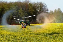 Availoable canola soybeans peas the helicopter hang