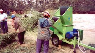 Подрібнення деревних відходів (Італія)