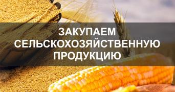 PURCHASE OF AGRICULTURAL PRODUCTS